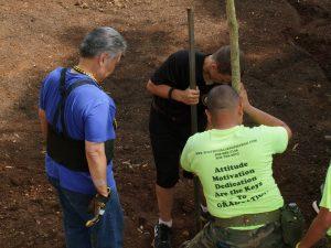 planting-a-tree-12