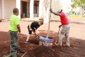 planting-a-tree-6
