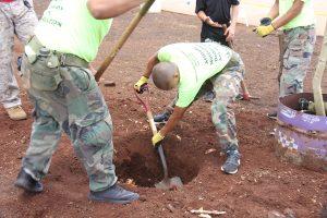 planting-a-tree-7