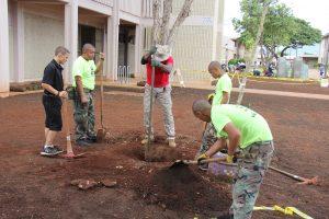 planting-a-tree-sgtmaj-3