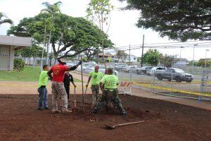 planting-a-tree-sgtmaj-5