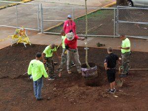 planting-a-tree-sgtmaj-6