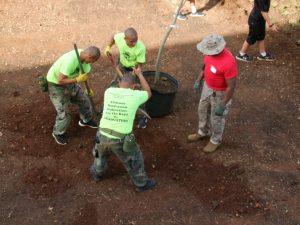 planting-a-tree-sgtmaj-7